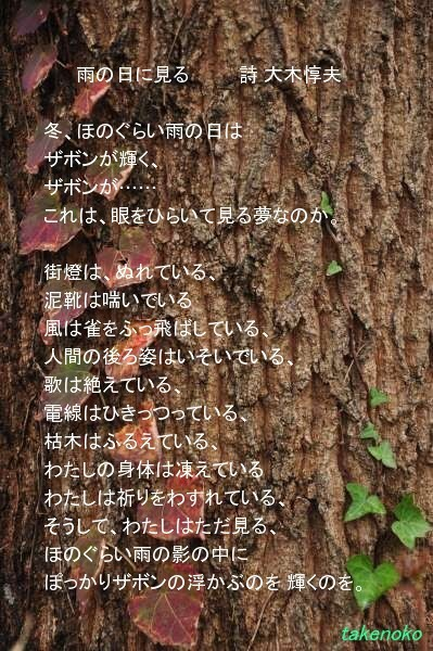 DSC_0333b.jpg